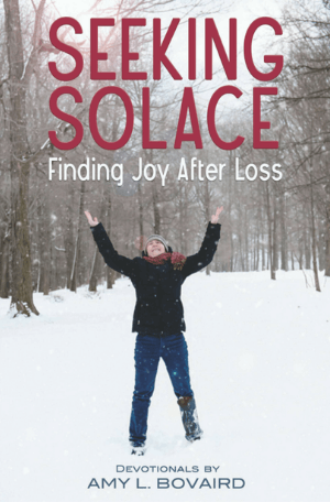 SEEKING SOLACE Book Cover