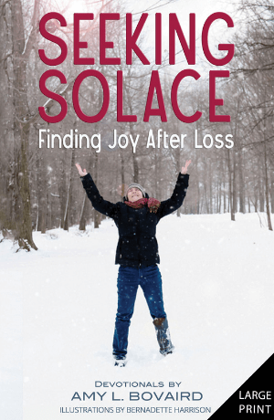 new cover for seeking solace large print book