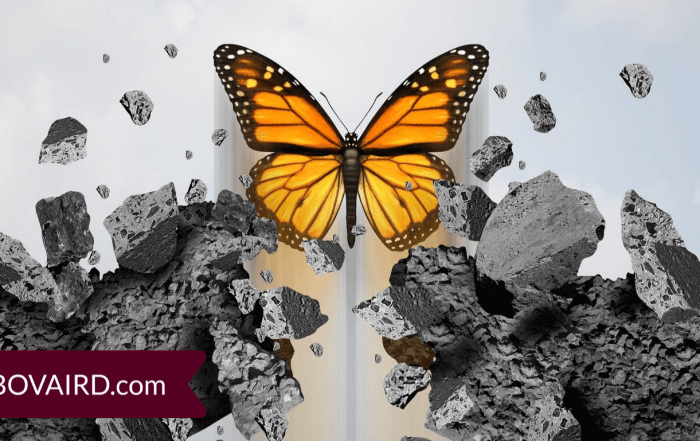 concept of working through fear and obstacles to transformation - a butterfly breaking through hard stone barrier