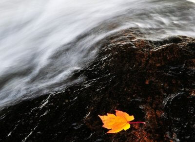 image of whirling water, wind and leaf