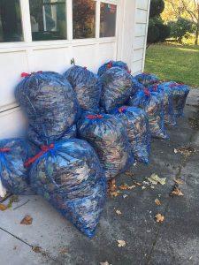18 bags of freshly raked leaves