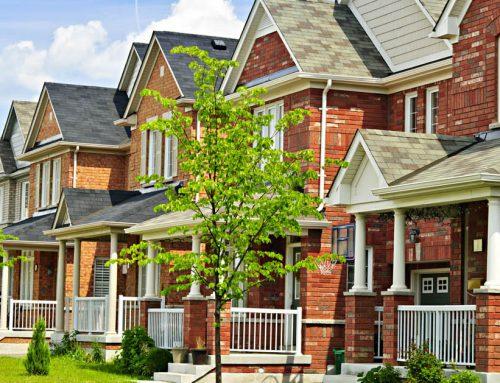 Sweet New Neighbors: A Similar Mobility Journey